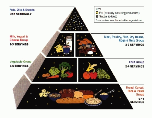 Food-Pyramid old